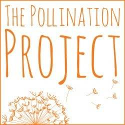 Logo of The Pollination Project Foundation