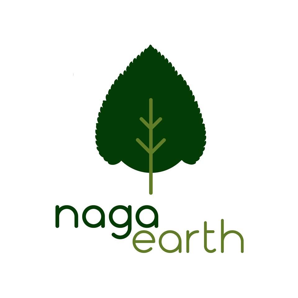 Logo of NagaEarth