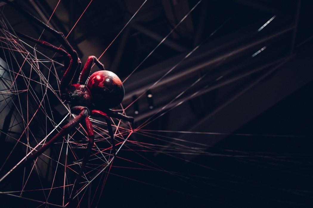 Bug Lab 7