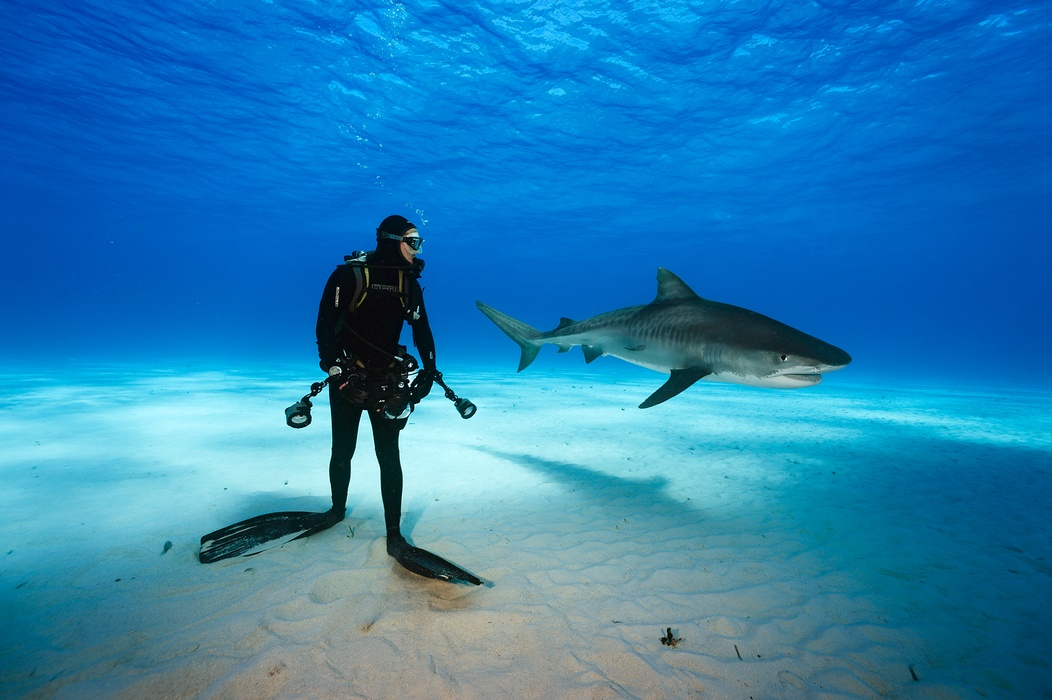 MM8116_131207_00129 Brian-Skerry