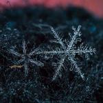 Snowflake 800X600