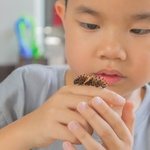 Boy Holding Bug 800 X 600