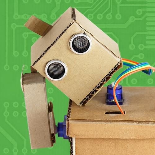Member Robot Dnp