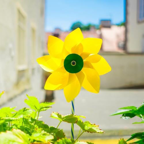 Pinwheel In Nature