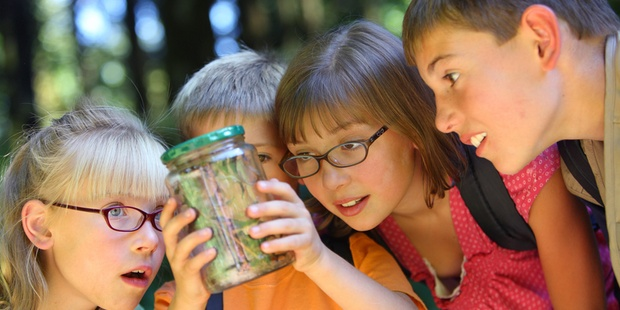 Kids Holding Jar Of Bugs 800 X 600