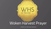 Woken Harvest Prayer Warrior Team Training