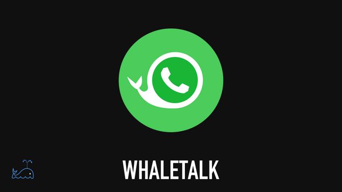 Auh010ygsdi6mpp9ftyw whaletalk thumb
