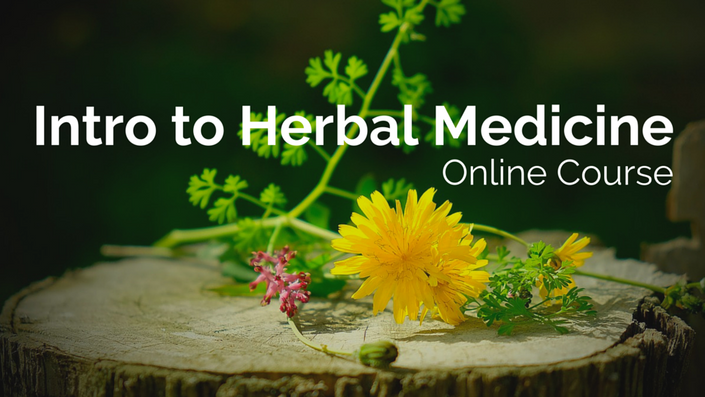 Bztuictnyyp983xiiqqq intro to herbal medicine