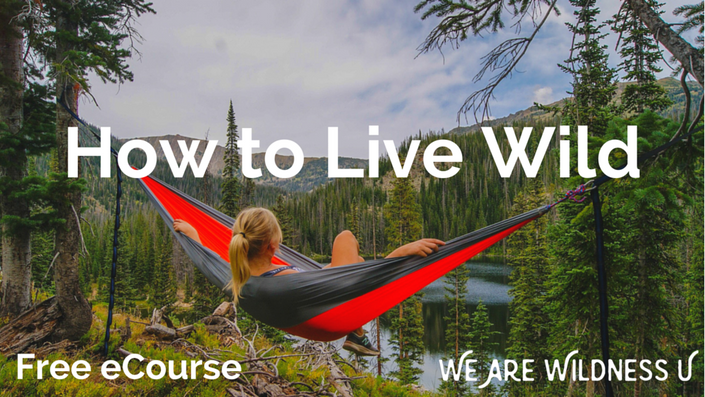 Cgeb6mbls06oemj17f5m how%20to%20live%20wild%20 %20free%20ecourse