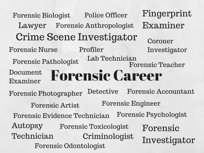 Uqo2cz8rr1kd4fzp4emv forensic%20career