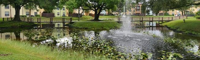 Belara Lakes