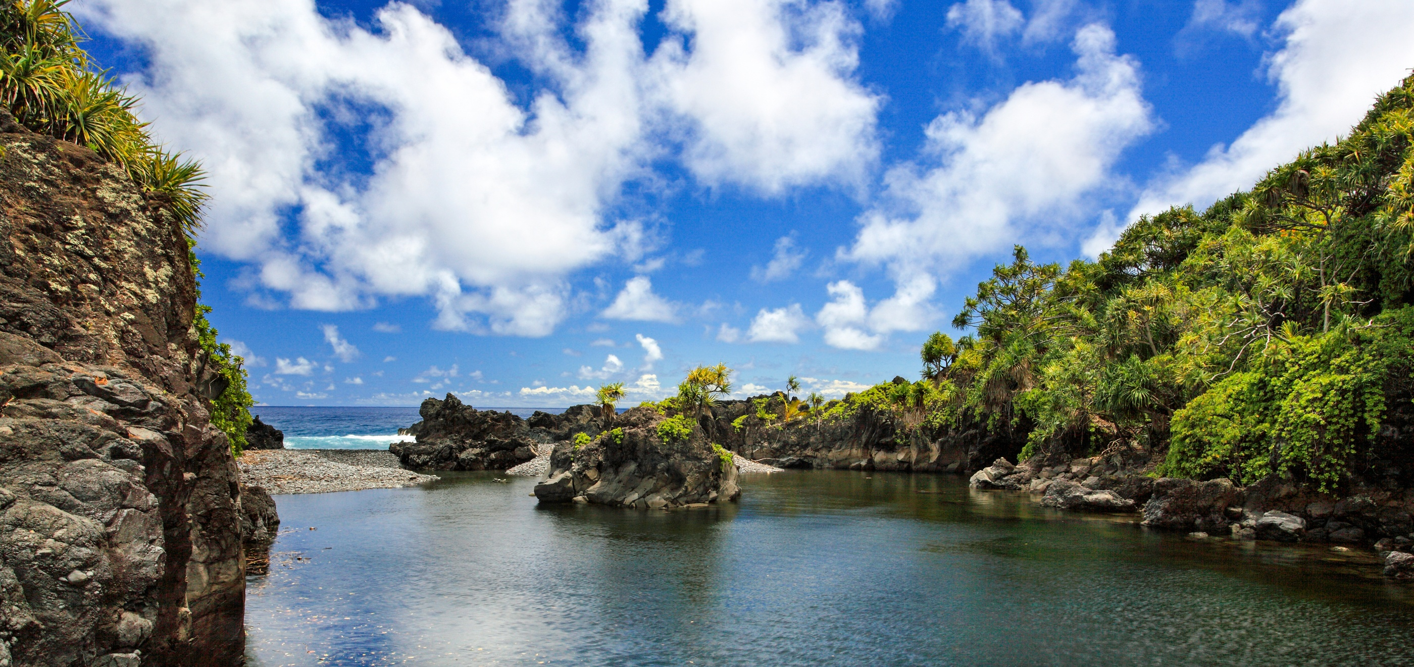 Maui home search cover