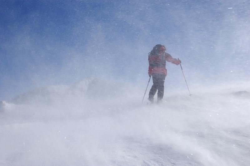 Snow Trip