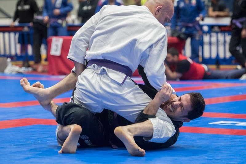 Purple belts are on the  2016 BJJ British Open mats