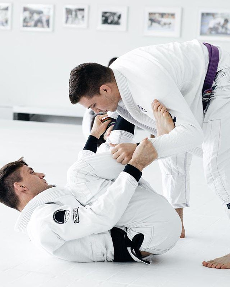 ART OF JIU JITSU