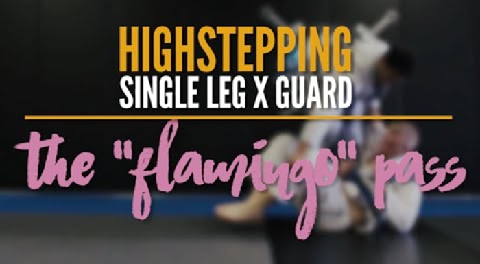 BJJ: Learn the flamingo guard pass