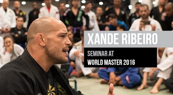 Full BJJ seminar with Xande Ribeiro