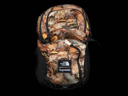 Supreme The North Face TNF leaves backpack - photo 1/6