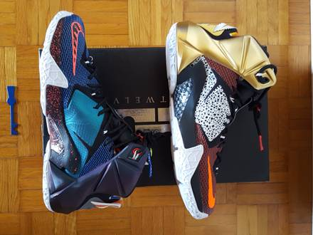 Nike Lebron XII 12 SE What the Lebron - photo 1/5