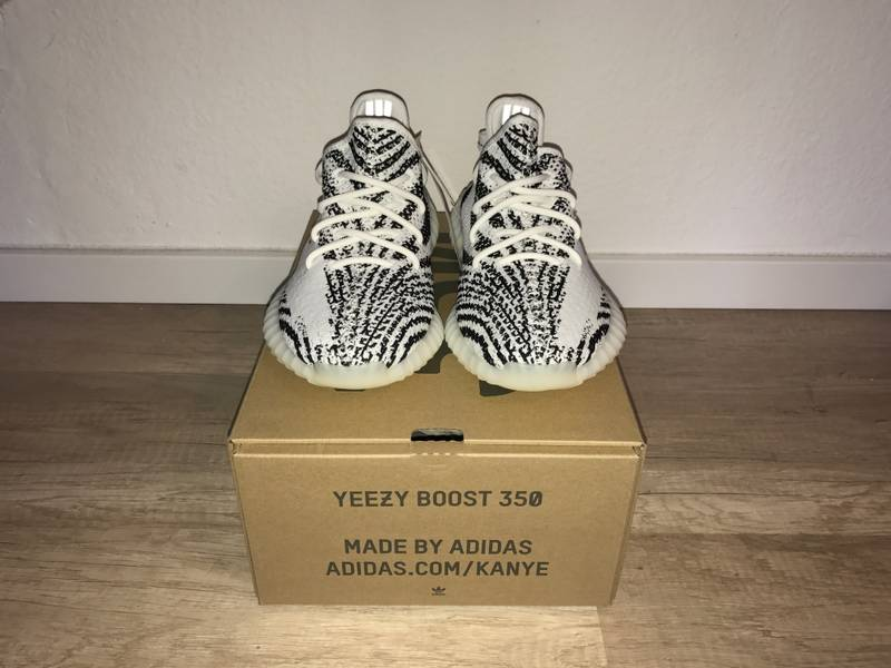 d3093a223 Do Yeezy Zebras Fit Big Mythbusting!!! Yeezy V2 Zebra Size   Fit