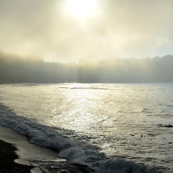 Fog scenes