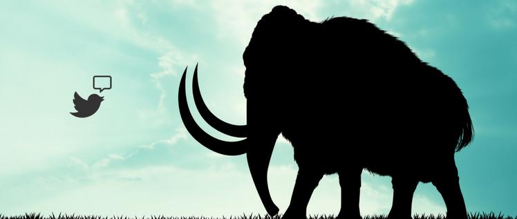 J'ai testé Mastodon : le dernier né des réseaux sociaux