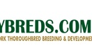 NY Thoroughbred Breeding and Development Fund