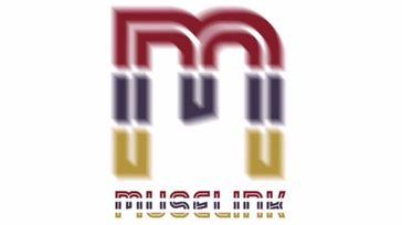 MuseFest by MuseLink App