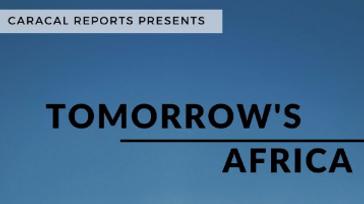 African Diaspora Entrepreneurship/Political Mentorship