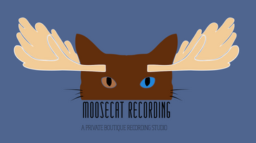 MooseCat Recording Summer Banger