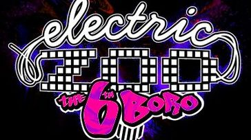 Electric Zoo VIP Experience
