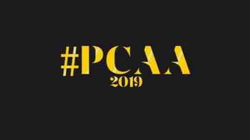 Pop Culture Africa Awards, 2019