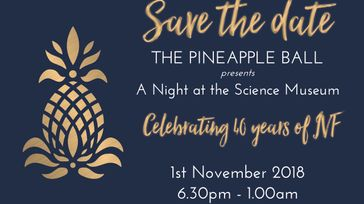 The Pineapple Ball at the Science Museum London