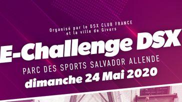 E-Challenge DSX