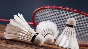 Spor Badminton Tournament