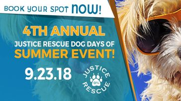 4th Annual Dog Days of Summer Event
