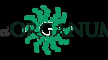 Da' Organum Business Fest 17