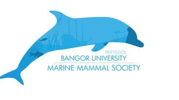 Bangor University Marine Mammal Conference