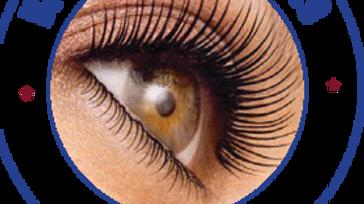 29th International Congress on VisionScience & Eye
