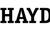 Haydon Building Corp