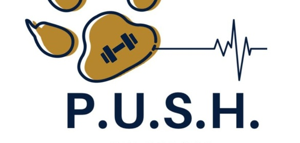 Fiu Spring Break 2020.Fiu Honors Push Spin Class Sponsormyevent