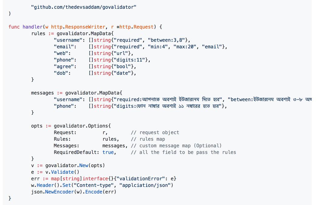 Package govalidator | Codementor
