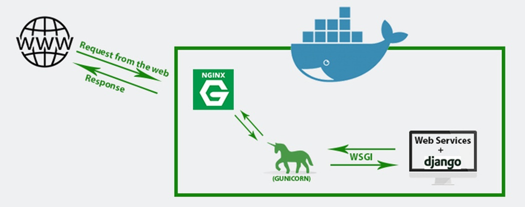 Nginx: Setting Up a Simple Proxy Server Using Docker and Python