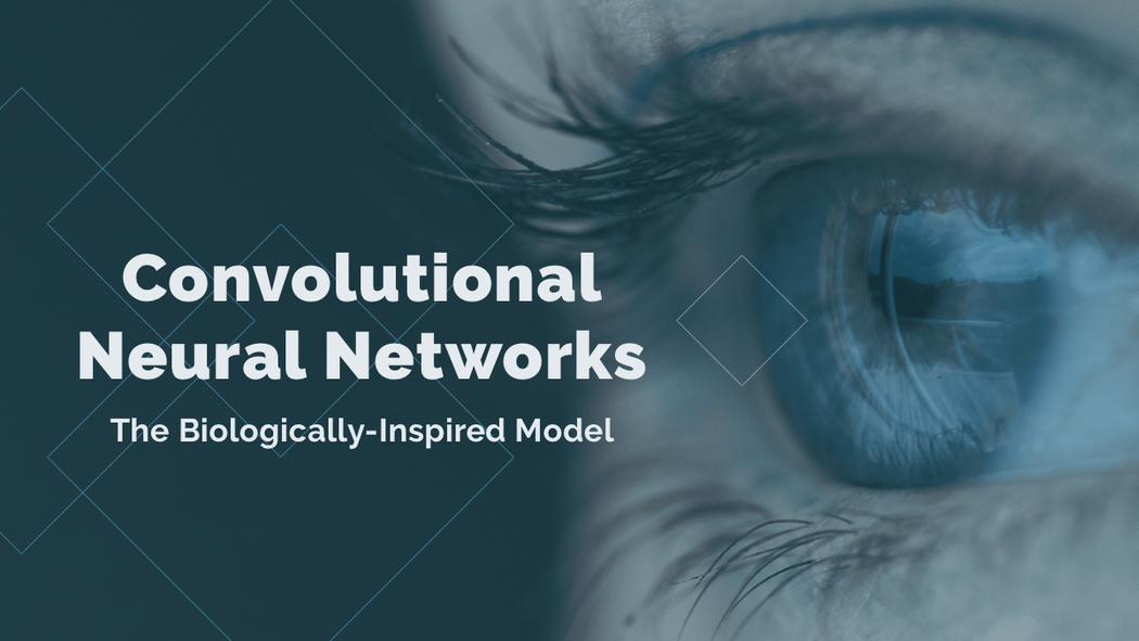 Convolutional Neural Networks: The Biologically-Inspired