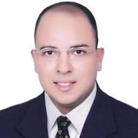 Mohamed Mustafa Zaghloul, Data architect engineer and developer