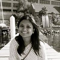Nisha Kiran, Dictionaries freelance programmer