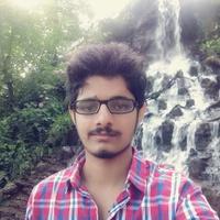 Rishabh Daal, Pandas freelance coder