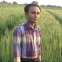 Rajnikant Kakadiya, Psd to wordpress software engineer and dev