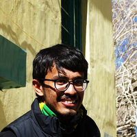 Achyut Joshi, Dash freelance coder