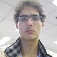 Rafael Lage Tavares, D3.js consultant and programmer